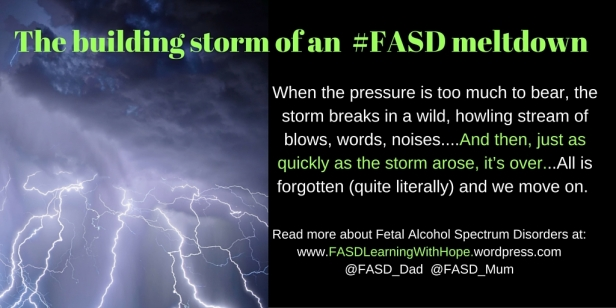FASD Meltdowns