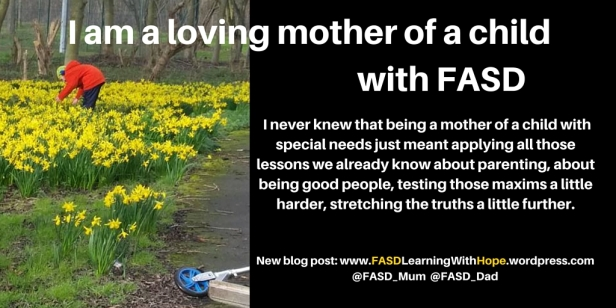 Mothering a child with FASD