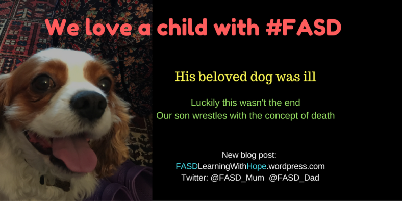 we-love-a-child-with-fasd-5