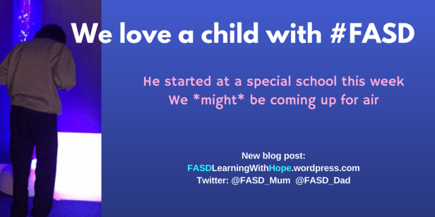we-love-a-child-with-fasd-6